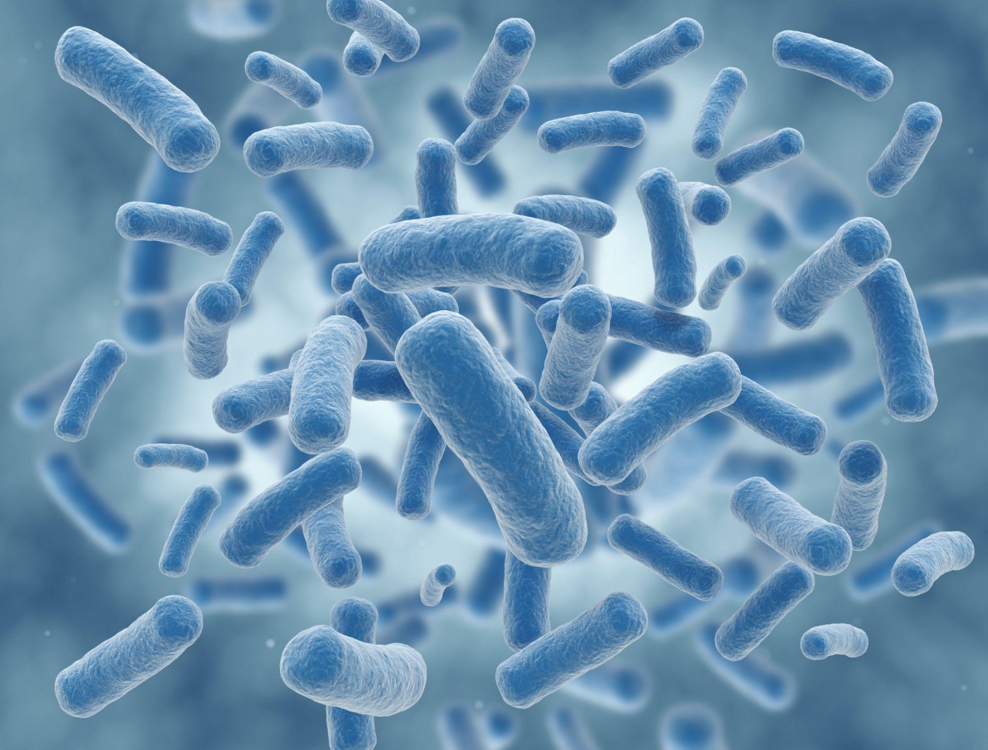 Anti-bacterial Brand & Sampling Solutions
