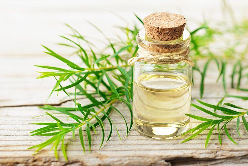 Anti-bacterial Ingredients in Skincare